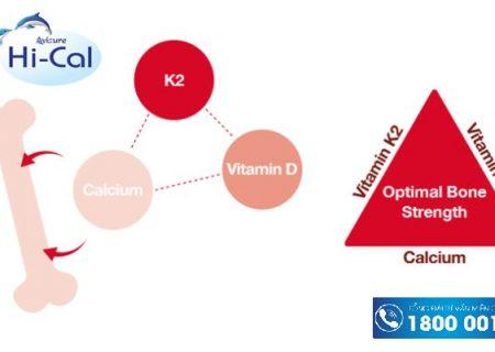 Tìm hiểu về sự kết hợp Vitamin K2 D3
